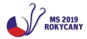 MS Rokycany 2019